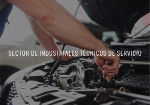 Canacintra-06-Sectores-Sector-de-Industriales-Técnicos-de-Servicio