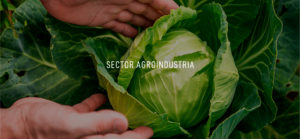 Canacintra-14-Sectores-Agroindustrial
